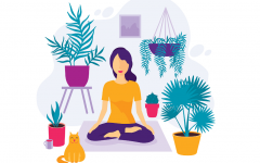 The Power of Meditation and Physical Exercise