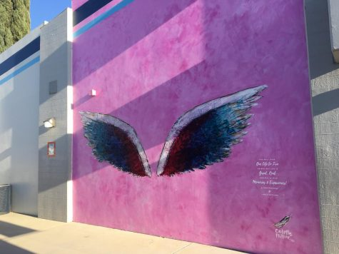 Angel wings painted in honor of Gracie Muehlberger at Saugus High School