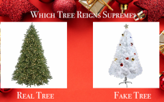 Real Versus Fake Christmas Tree Debate