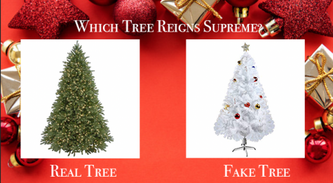 The Scroll writers debate the Christmas Tree issue below