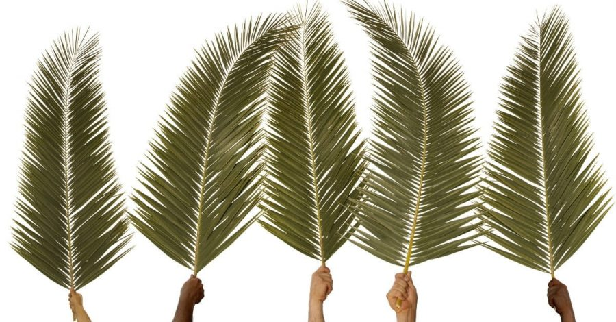 Palm+Sunday+is+a+Christian+holiday%2C+but+many+wonder%2C+what+is+its+significance%3F