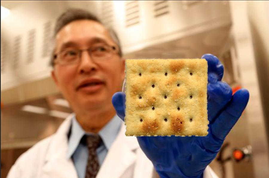 Scientists have begun to study the scientific properties of the elusive saltine cracker.