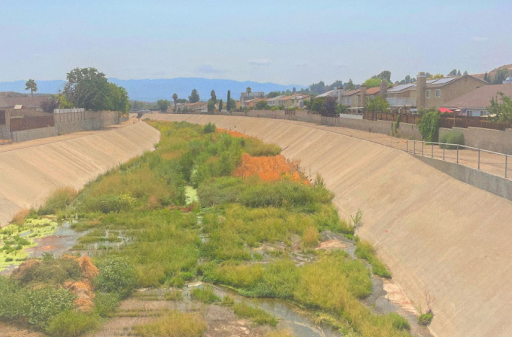 This image demonstrates the un-thought of countless fun activities to do in Santa Clarita.